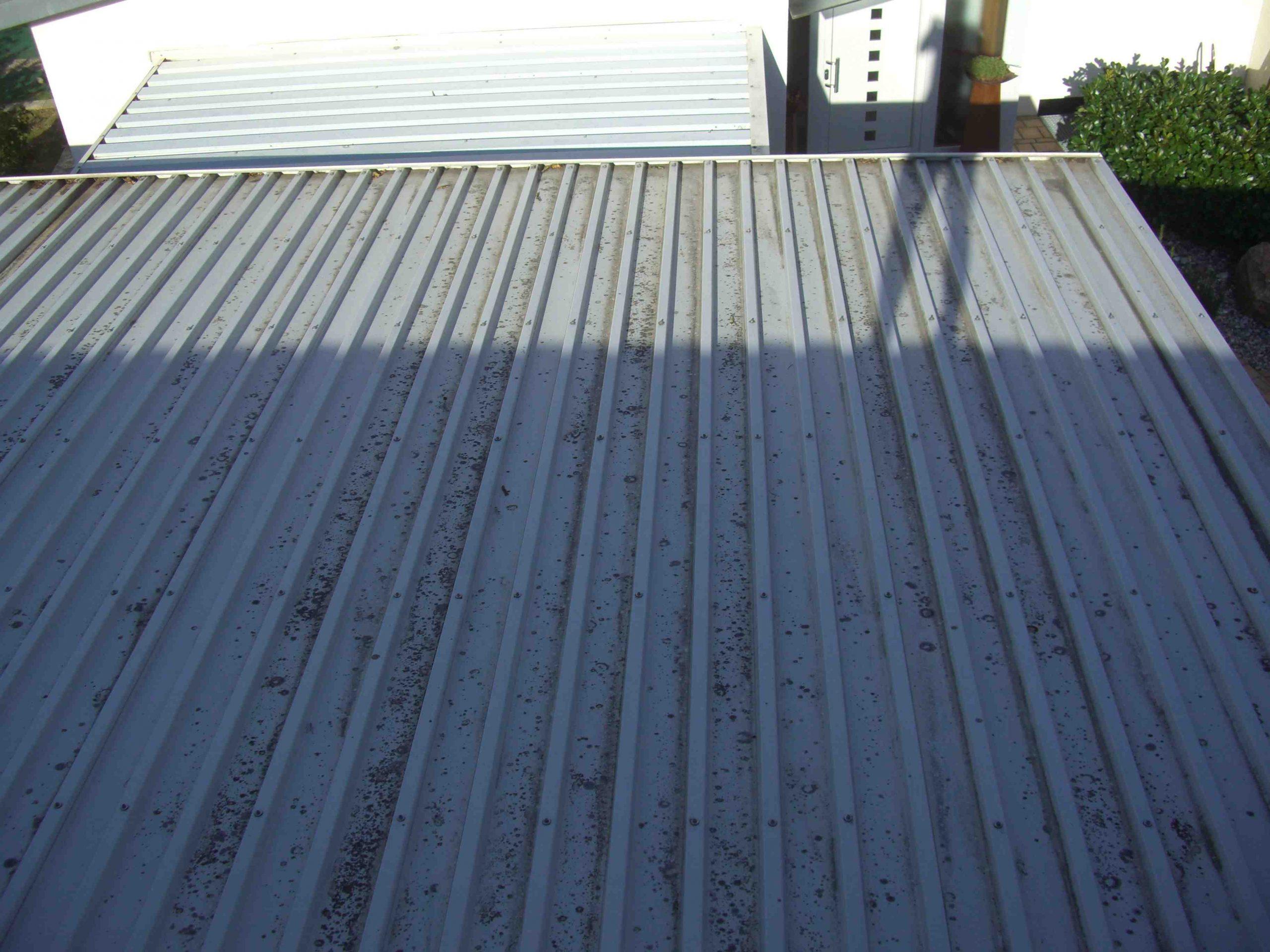 Dach4-scaled.jpg